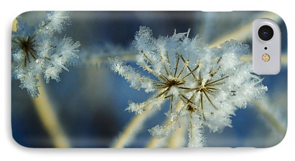 The Beauty Of Winter IPhone Case by Ellen Heaverlo