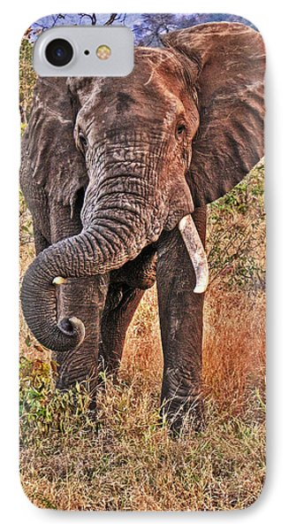 IPhone Case featuring the photograph The Bull by William Fields