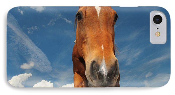 The Curious Horse Phone Case by Paul Ward