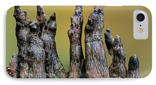 The Cypress Knees Chorus Phone Case by Kristin Elmquist