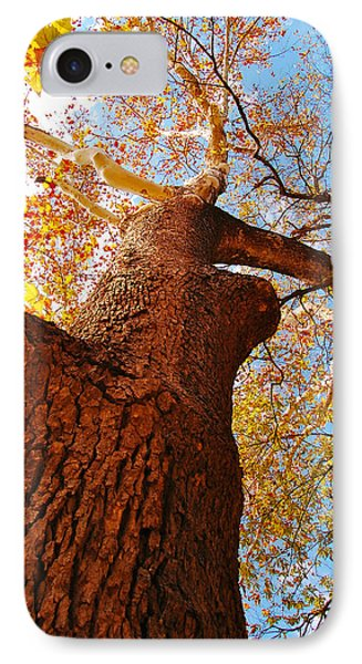 IPhone Case featuring the photograph The Deer  Autumn Leaves Tree by Peggy Franz