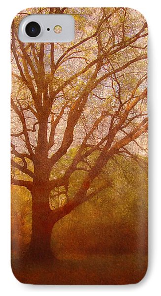 The Fairy Tree IPhone Case by Brett Pfister
