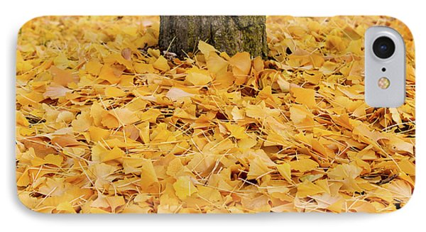 IPhone Case featuring the photograph The Fall Of Ginkgo by Rachel Cohen