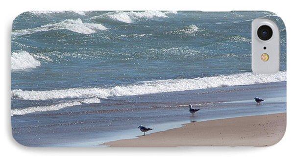 The Four Gulls IPhone Case by Cedric Hampton