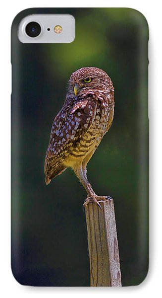 The Guardian IPhone Case by Anne Rodkin