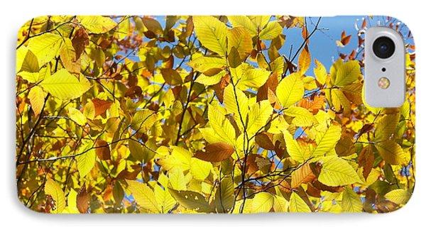 The Joy Of Autumn IPhone Case by Robin Regan