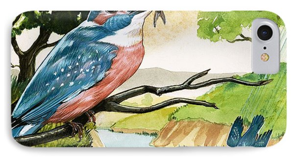 The Kingfisher Phone Case by D A Forrest