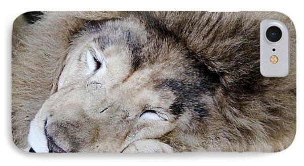The Lion Sleeps Phone Case by Elizabeth Hart