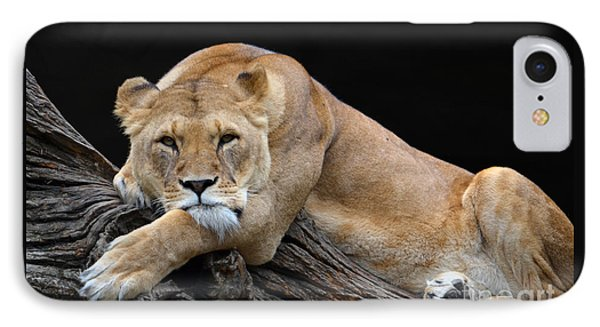 The Lioness Is Watching You IPhone Case