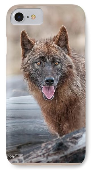 The Lone Wolf IPhone Case by CR  Courson