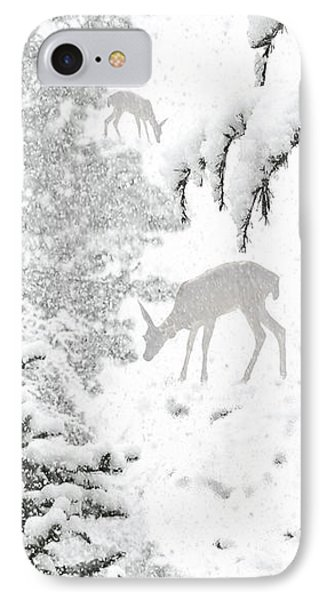 The Lookout IPhone Case by Diane Schuster
