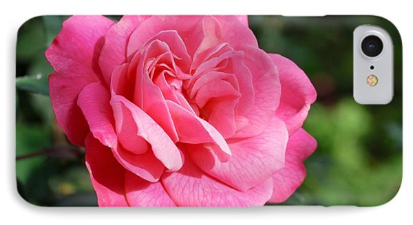 IPhone Case featuring the photograph The Pink Rose by Fotosas Photography