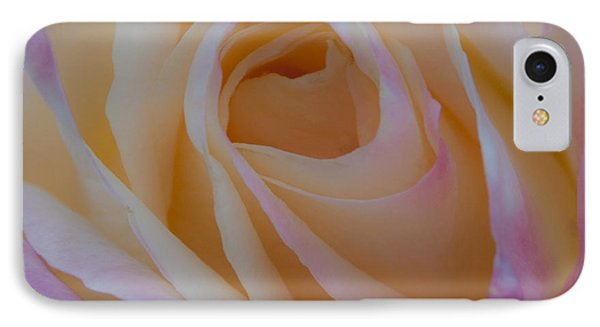 The Princess Diana Rose IPhone Case by David Patterson