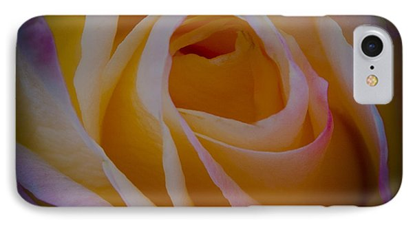 The Princess Diana Rose II IPhone Case by David Patterson