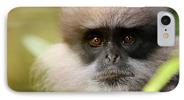 The Purple-faced Langur. Nuwara Eliya.sri Lanka Phone Case by Jenny Rainbow