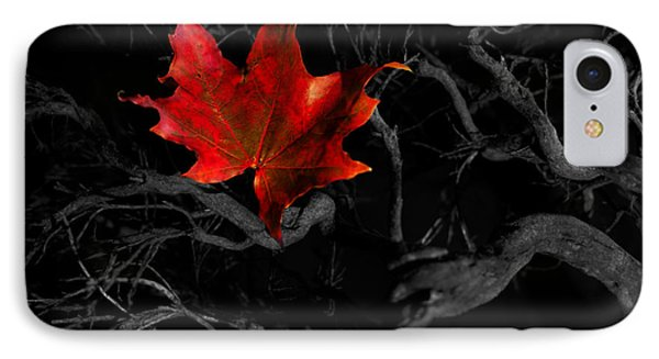 IPhone Case featuring the photograph The Red Leaf by Beverly Cash
