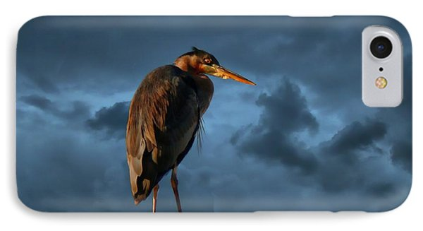 The Rooftop Watcher Phone Case by Gail Bridger