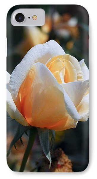 IPhone Case featuring the photograph The Rose by Fotosas Photography