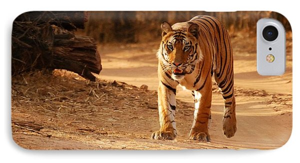The Royal Bengal Tiger IPhone Case by Fotosas Photography