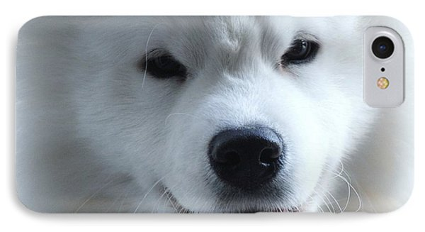 The Samoyed IPhone Case by Lisa  DiFruscio
