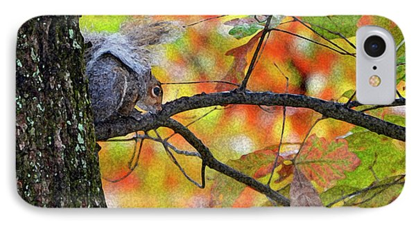 IPhone Case featuring the photograph The Squirrel Umbrella by Paul Mashburn