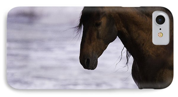 The Stallion And The Ocean Phone Case by Carol Walker
