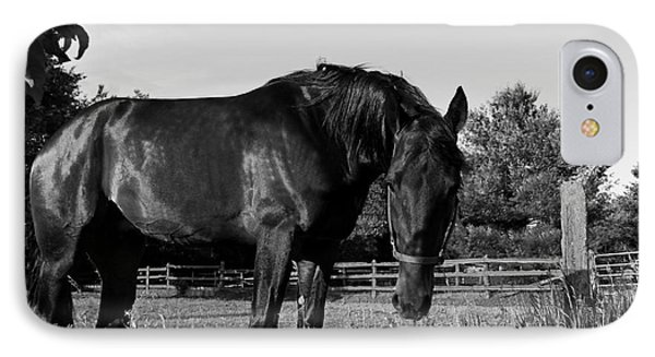 IPhone Case featuring the photograph The Stallion by Davandra Cribbie