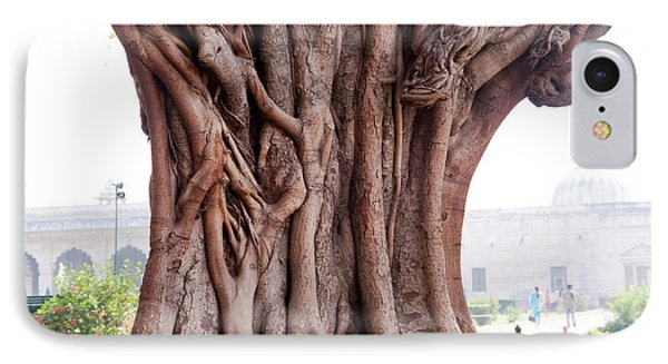 The Twisted And Gnarled Stump And Stem Of A Large Tree Inside The Qutub Minar Compound IPhone Case by Ashish Agarwal