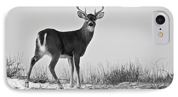 IPhone Case featuring the photograph The Watching Deer by Nancy De Flon