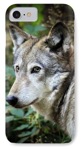 IPhone Case featuring the photograph The Wolf by Steve McKinzie