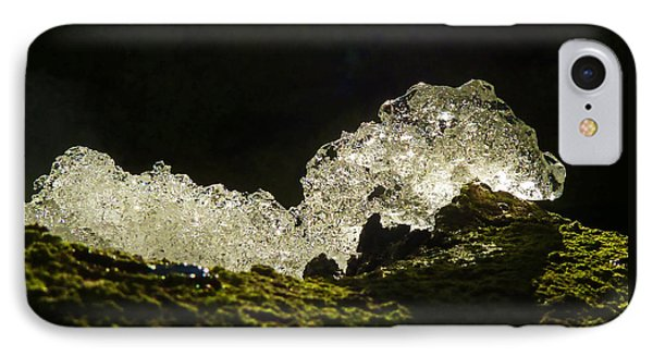 IPhone Case featuring the photograph This Is A Very Hungry Cold Caterpillar  by Steve Taylor