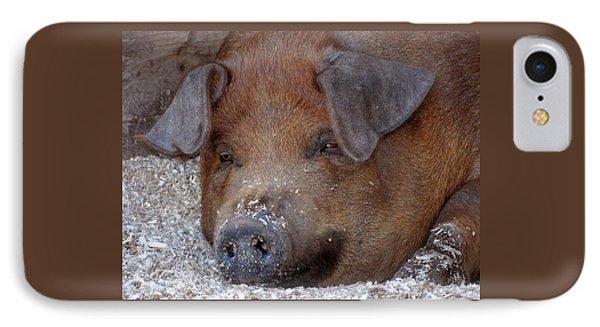 This Little Piggy Took A Nap IPhone Case