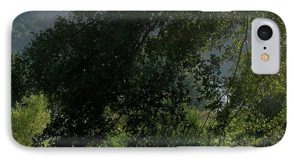 IPhone Case featuring the photograph This Ole Tree by Maria Urso
