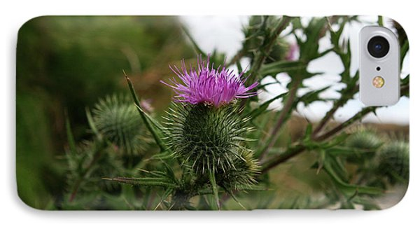 IPhone Case featuring the photograph Thistle Bloom by Lorraine Devon Wilke