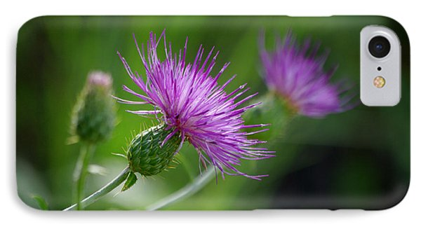 IPhone Case featuring the photograph Thistle Dance by Vicki Pelham