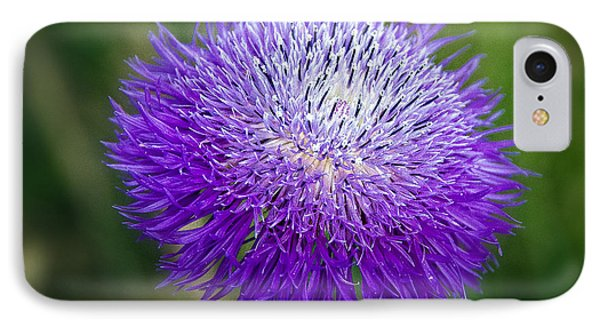 Thistle I Phone Case by Tamyra Ayles