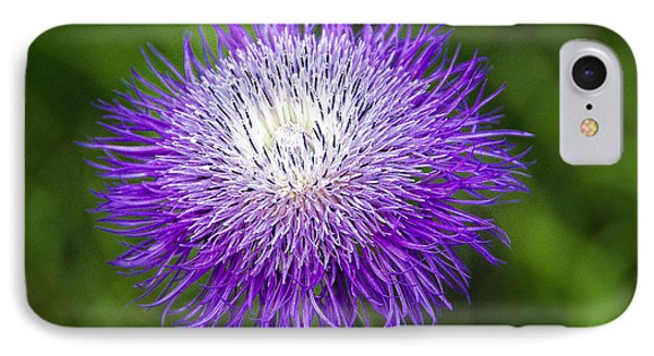 Thistle II Phone Case by Tamyra Ayles
