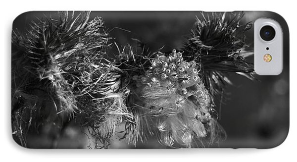 Thistle Seeds IPhone Case by Dariusz Gudowicz