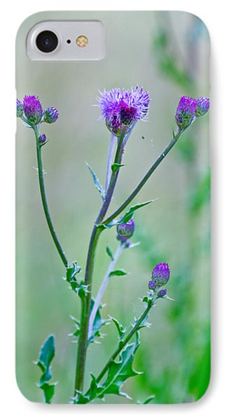 Thistledown Pastel Passion IPhone Case