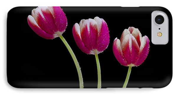 Three Of A Kind IPhone Case by Susan Candelario