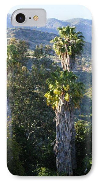 IPhone Case featuring the photograph Three Palm Trees by Sue Halstenberg