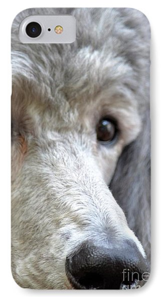Through Dusty's Eyes Phone Case by Maria Urso