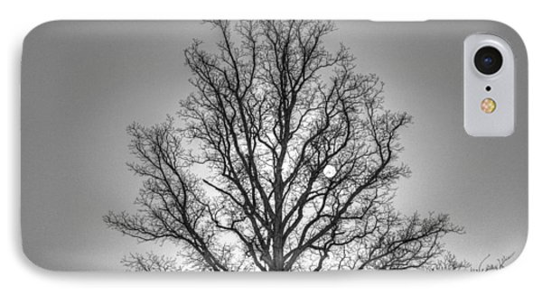 Through The Boughs Bw IPhone Case by Dan Stone