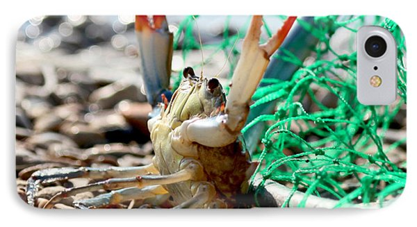 Crab Throw Me Something Mister IPhone Case by Luana K Perez