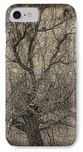 Tickle Of Branches  Phone Case by Jerry Cordeiro