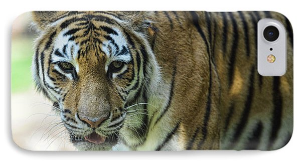 Tiger - Endangered - Wildlife Rescue IPhone Case