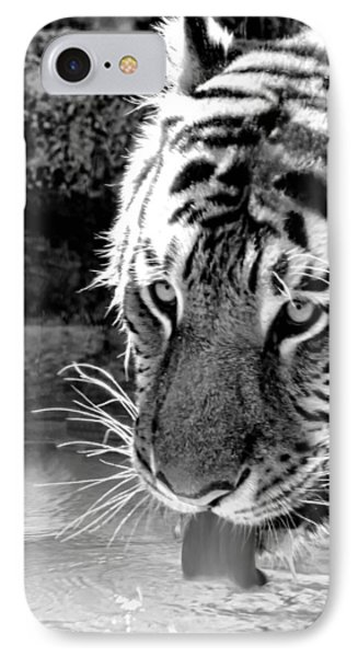 Tiger At The Watering Hole Phone Case by Tracie Kaska