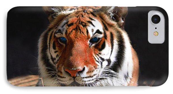 Tiger Blue Eyes Phone Case by Rebecca Margraf
