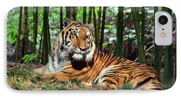 Tiger Rest And Bamboo Phone Case by Sandi OReilly