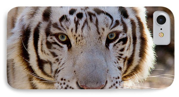 Tiger Stripes Exotic Animal Sanctuary 8 IPhone Case